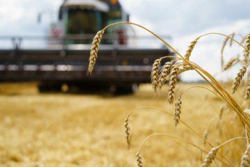 Traktorska oprema za zahtevno delo